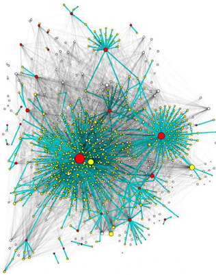 Subgraph of the retweet network superimposed to the corresponding followers network.